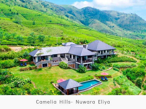 Camelia-Hills--Nuwara-Eliya