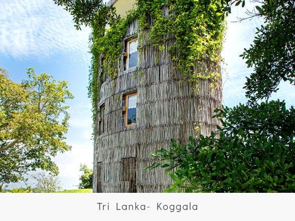 Tri-Lanka--Koggala